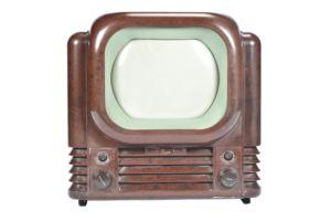 Bush TV22